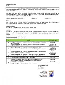 COMPTE RENDU CM 08-12-2020